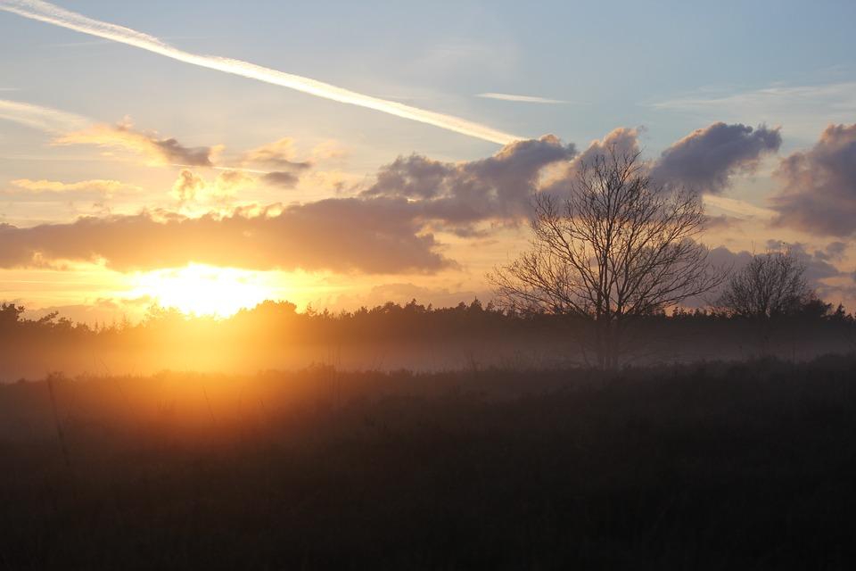 Netherlands Hoge Veluwe national park 梵高国家森林公园 梵高博物馆 大自然